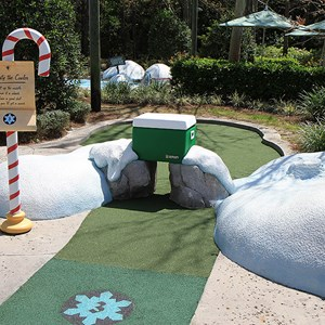 3 of 18: Winter Summerland Mini Golf - Hole 3