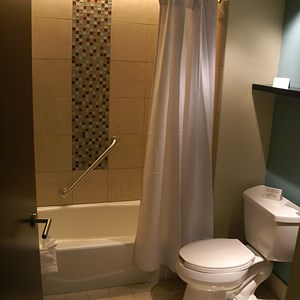 15 of 38: Bay Lake Tower at Disney's Contemporary Resort - The master bathroom shower