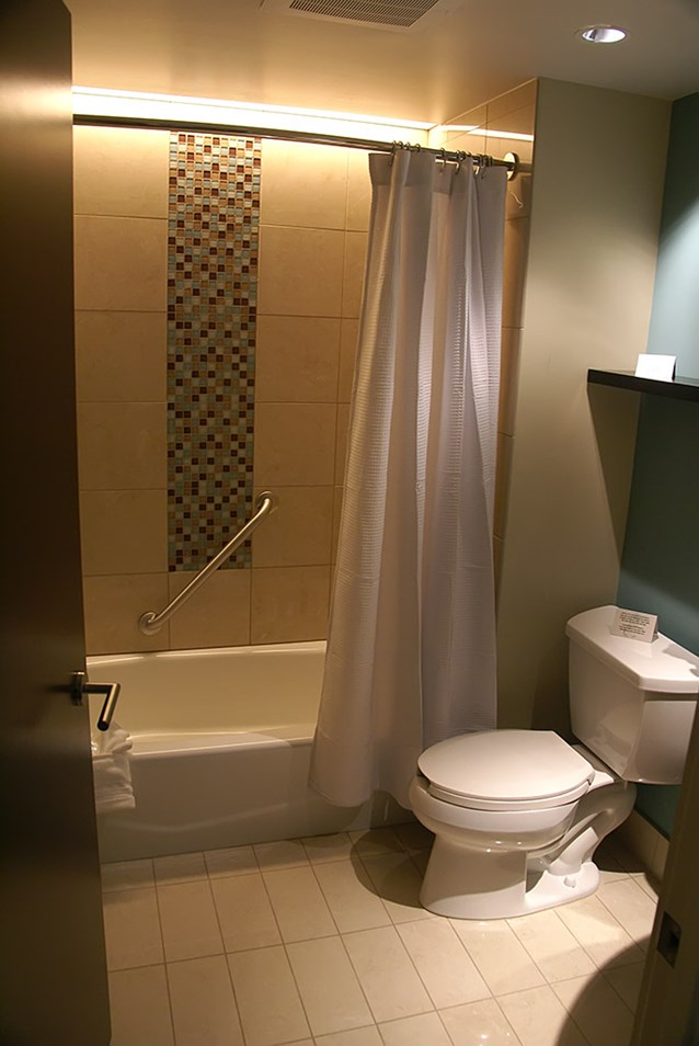 Bay Lake Tower at Disney's Contemporary Resort - The master bathroom shower