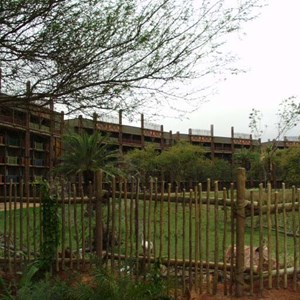 40 of 206: Disney's Animal Kingdom Lodge - Animal Kingdom Lodge preview weekend tour