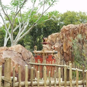 43 of 206: Disney's Animal Kingdom Lodge - Animal Kingdom Lodge preview weekend tour