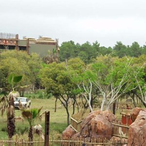 56 of 206: Disney's Animal Kingdom Lodge - Animal Kingdom Lodge preview weekend tour