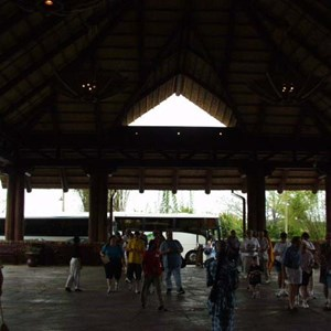 194 of 206: Disney's Animal Kingdom Lodge - Animal Kingdom Lodge preview weekend tour