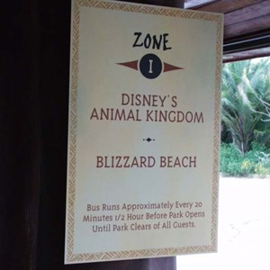 201 of 206: Disney's Animal Kingdom Lodge - Animal Kingdom Lodge preview weekend tour
