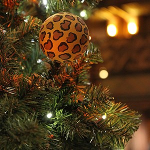 5 of 16: Disney's Animal Kingdom Lodge - Animal Kingdom Lodge holiday decorations 2009