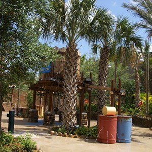 6 of 9: Disney's Animal Kingdom Lodge - Kidani Village - Kidani Village pool area