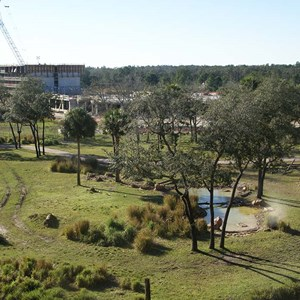 12 of 16: Disney's Animal Kingdom Lodge - Kidani Village - Kidani Village construction