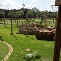 Disney&#39;s Animal Kingdom Villas - View of the overlook area from the Kidani Village lobby balcony.