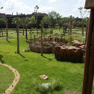 3 of 6: Disney's Animal Kingdom Lodge - Kidani Village - View of the overlook area from the Kidani Village lobby balcony.
