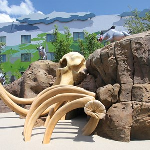 7 of 14: Disney's Art of Animation Resort - The Bone Yard playground in the Lion King section at Disney's Art of Animation Resort