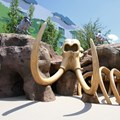 Disney's Art of Animation Resort - The Bone Yard playground in the Lion King section at Disney's Art of Animation Resort