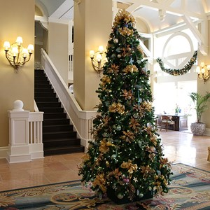 3 of 16: Disney's Beach Club Resort - Beach Club Resort holiday decorations 2009