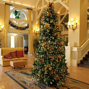 4 of 16: Disney's Beach Club Resort - Beach Club Resort holiday decorations 2009
