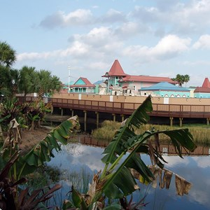 1 of 5: Disney's Caribbean Beach Resort - Caribbean Beach main pool refurbishment progress photos