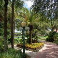 Disney&#39;s Caribbean Beach Resort - Jamaica area walkway