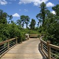 Disney's Caribbean Beach Resort - Walkway through to Barbados
