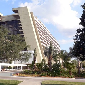 1 of 3: Disney's Contemporary Resort - Contemporary Resort gets new palm trees at the main entrance