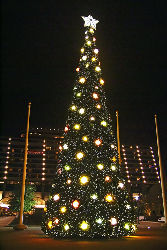 Disney's Contemporary Resort - The new 2008 Contemporary Resort Christmas tree lit at nighttime