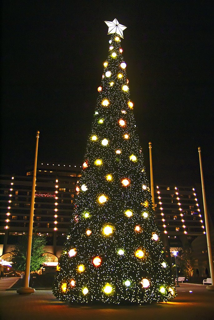 Contemporary Resort holiday decorations 2008