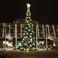 Disney&#39;s Contemporary Resort - The Contemporary Resort christmas tree - 70 ft tall featuring nearly 35,800 white LEDs
