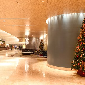 5 of 6: Disney's Contemporary Resort - The Contemporary Resort lobby tree