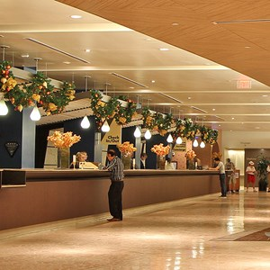 6 of 6: Disney's Contemporary Resort - The Contemporary Resort check-in area decorations