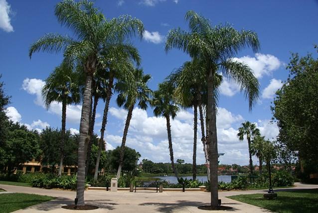 Disney's Coronado Springs Resort - View from Casitas building 4 to the Lago Dorado lagoon