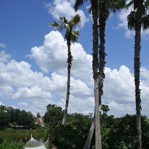 15 of 21: Disney's Coronado Springs Resort - Casitas area beach