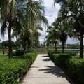 Disney's Coronado Springs Resort - View from Casitas building 5