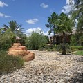Disney&#39;s Coronado Springs Resort - Ranchos area landscaping
