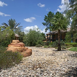 2 of 16: Disney's Coronado Springs Resort - Ranchos area landscaping