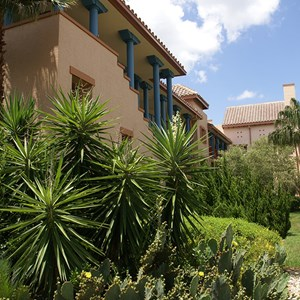 11 of 16: Disney's Coronado Springs Resort - Ranchos building 7a
