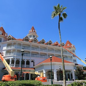 1 of 1: Disney's Grand Floridian Resort and Spa - Exterior refurbishment