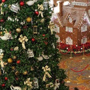5 of 13: Disney's Grand Floridian Resort and Spa - Grand Floridian Gingerbread House 2011