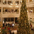 Disney&#39;s Grand Floridian Resort and Spa - The Grand Floridian lobby Christmas tree.