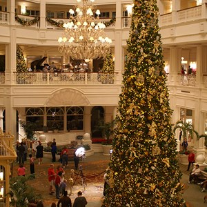 1 of 15: Disney's Grand Floridian Resort and Spa - The Grand Floridian lobby Christmas tree.