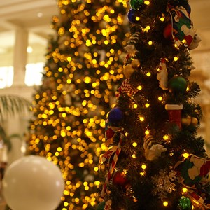 3 of 15: Disney's Grand Floridian Resort and Spa - The Grand Floridian lobby Christmas tree.