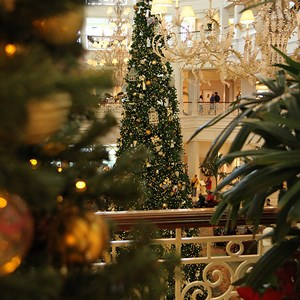 5 of 32: Disney's Grand Floridian Resort and Spa - Grand Floridian holiday decorations 2009