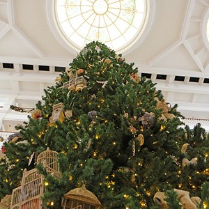 15 of 32: Disney's Grand Floridian Resort and Spa - Grand Floridian holiday decorations 2009