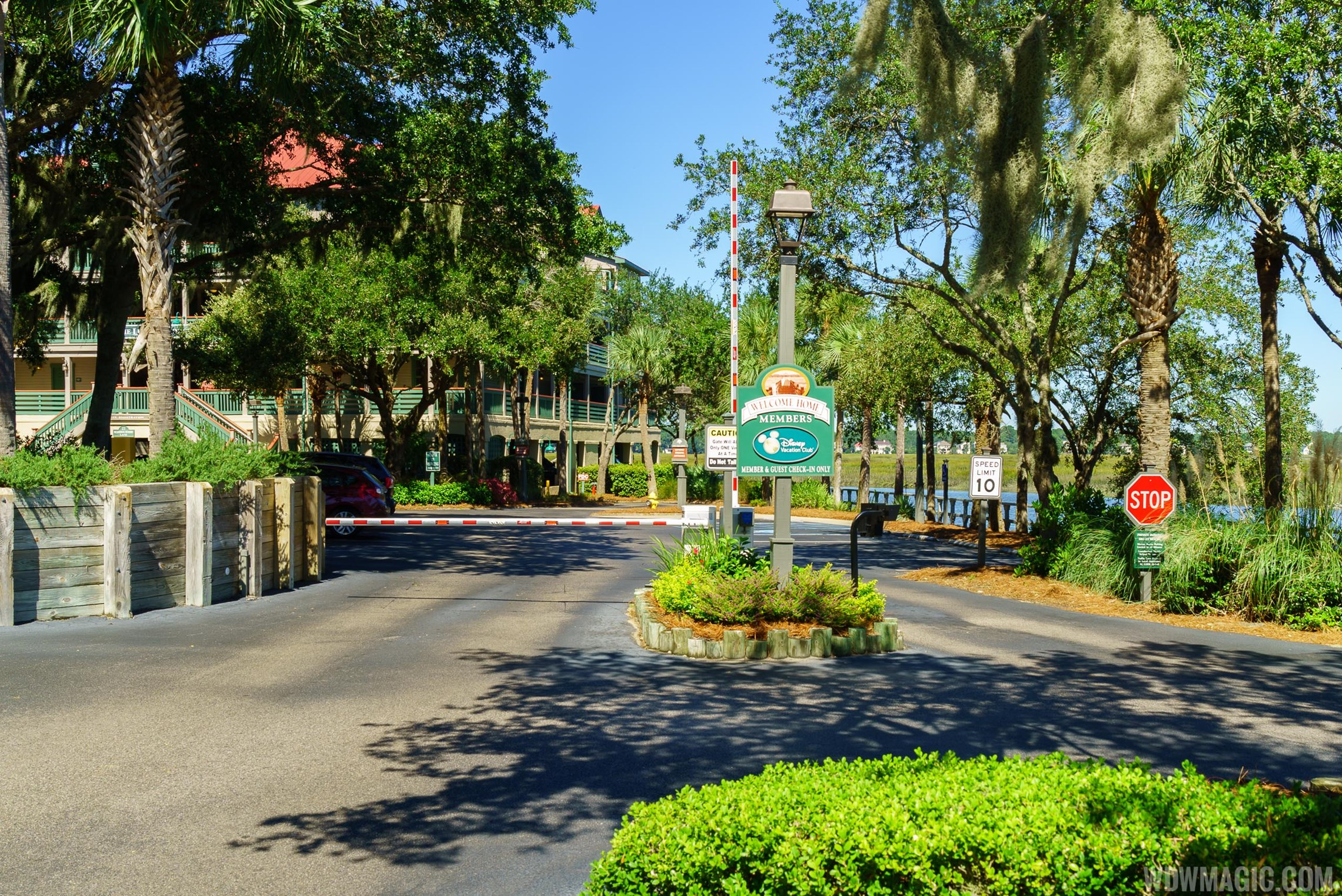 Disney's Hilton Head Island Resort - Buildings, Grounds and Pool