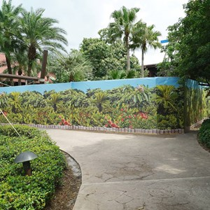 2 of 4: Disney's Polynesian Resort - Nanea Pool area closed for refurbishment