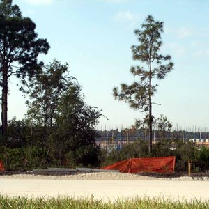 4 of 4: Disney's Pop Century Resort - Latest Pop Century Resort construction