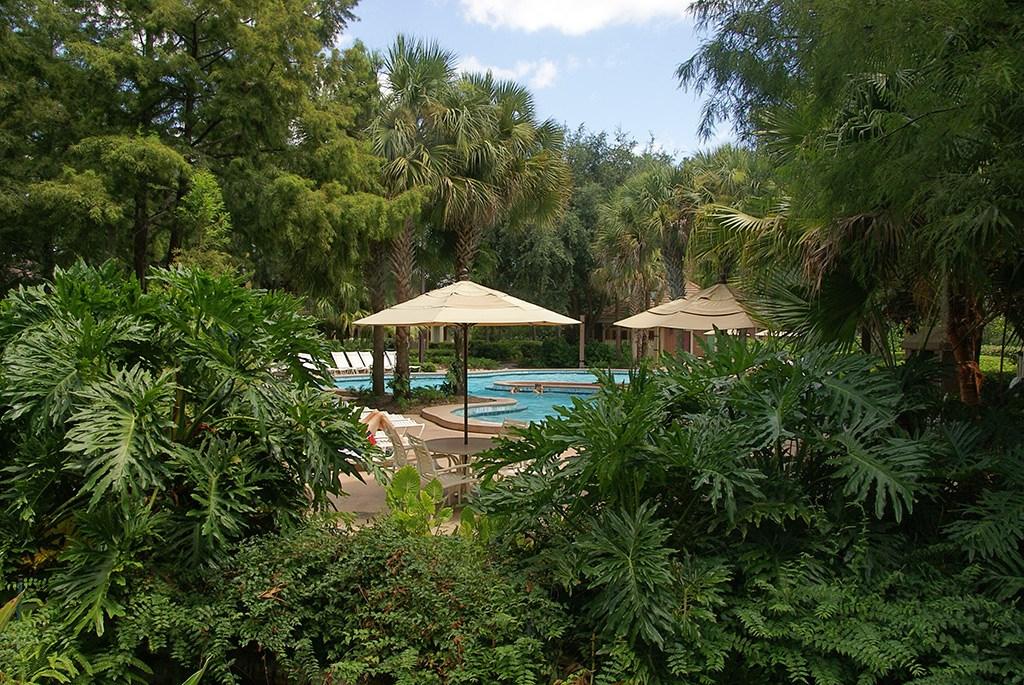 Alligator Bayou quiet pools