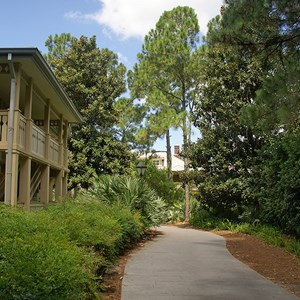13 of 24: Disney's Port Orleans Resort Riverside - Alligator Bayou grounds and buildings