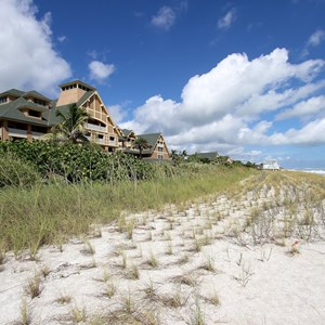 2 of 34: Disney's Vero Beach Resort - The beach in front of the Inn