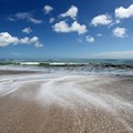 Disney&#39;s Vero Beach Resort - The ocean