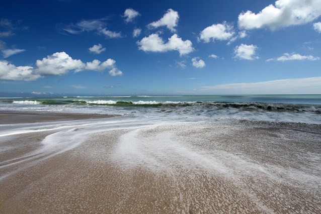 Disney's Vero Beach Resort - The ocean