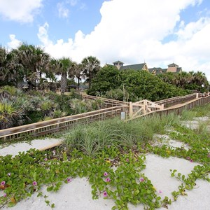 7 of 34: Disney's Vero Beach Resort - The ramp down from the resort to the beach