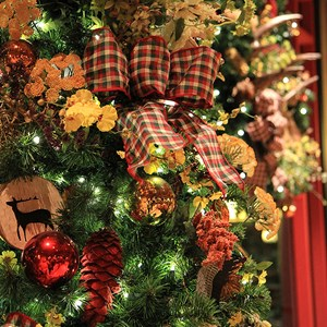 8 of 14: Disney's Wilderness Lodge Resort - Wilderness Lodge Resort holiday decorations 2009