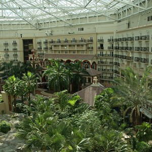 2 of 8: Gaylord Palms Resort - Views of the Atrium from a guest room balcony